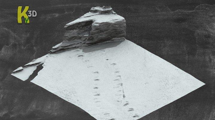 Tertrapod Footprints - Valentia Island 3D Model