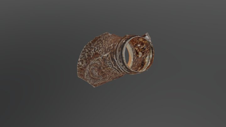Bottle Top 3D Model