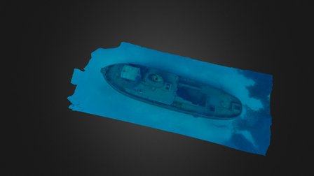 The wreck of the Rozi 3D Model