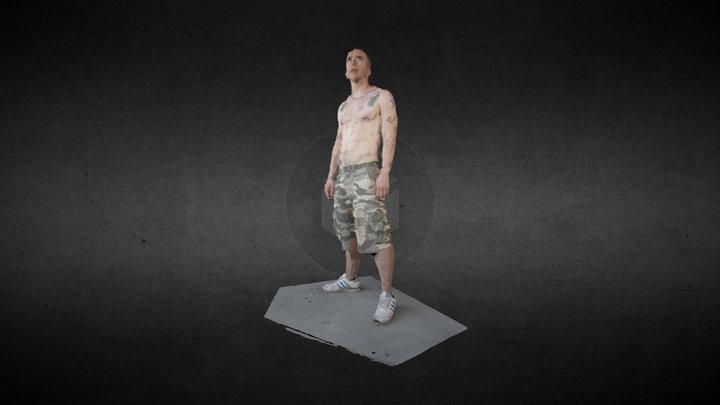 Warrior - processed by Pix4Dmapper 3D Model