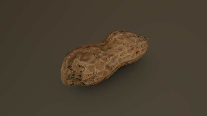 Peanut Pod 01 3D Model