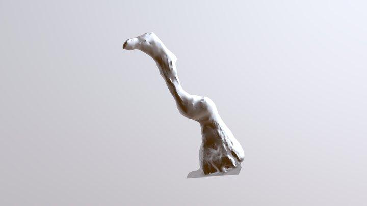 Pelican-3d-itecom-v2 3D Model