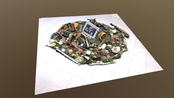 Champignons de la Haute-Marne 3D Model
