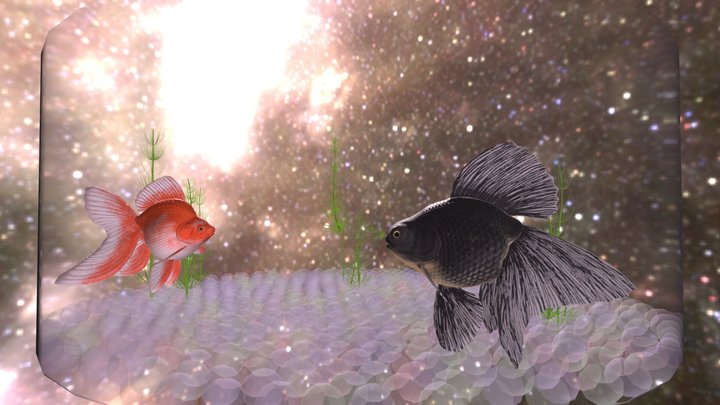 Goldfish Scene 1:  Aka to Kuro 3D Model