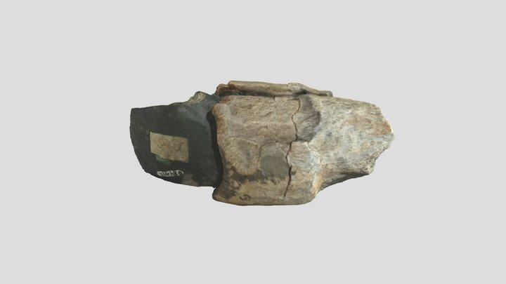 Prehistoric Hafted Axe Head 3D Model