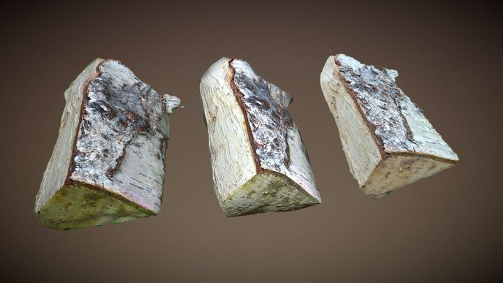 Log 3D Model
