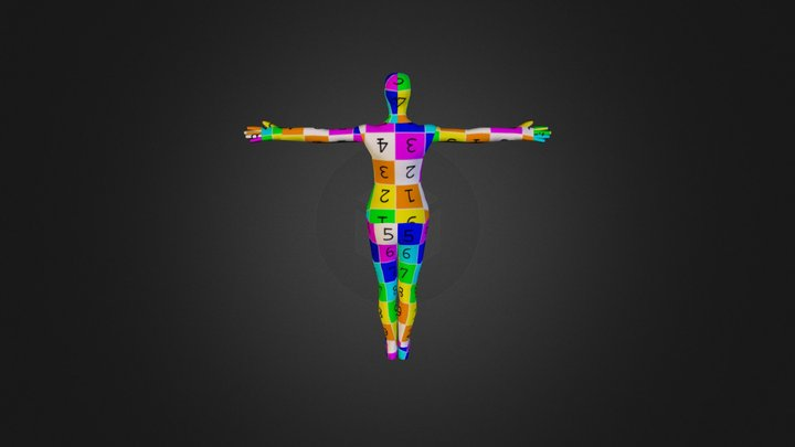 Full Body Model UV'd 3D Model