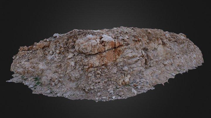 Limestone outcrop 2 3D Model