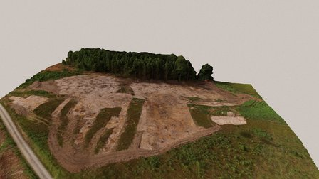 Iron Age house and grave mounds in Solum, Skien 3D Model