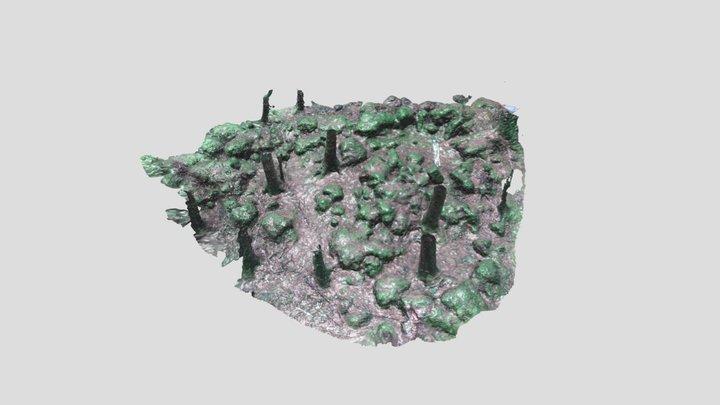 Cavan Burren Hut 2 3D Model