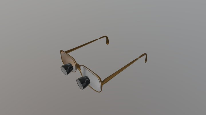 Dental loupes / Surgical Glasses 3D Model