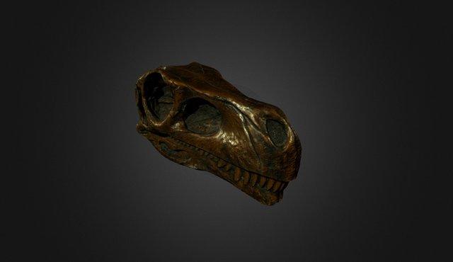 Herrerassaurus 3D Model