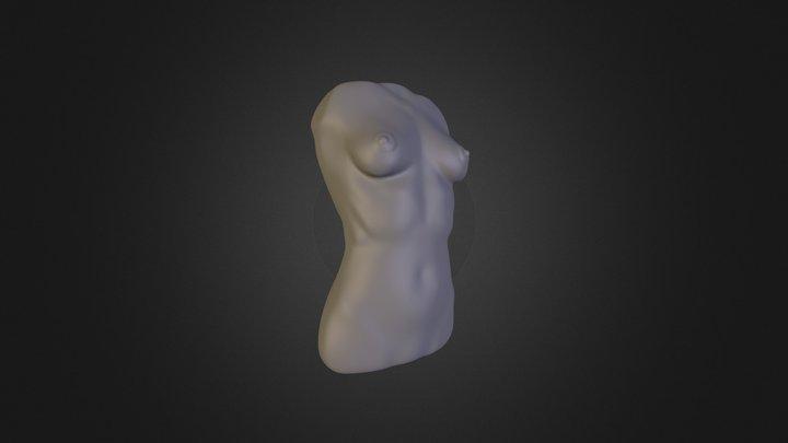 femaleTorso_01 3D Model