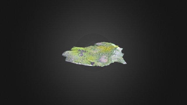 Mankote Simplified 3d Mesh 3D Model