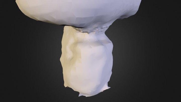 Meok 3D Model