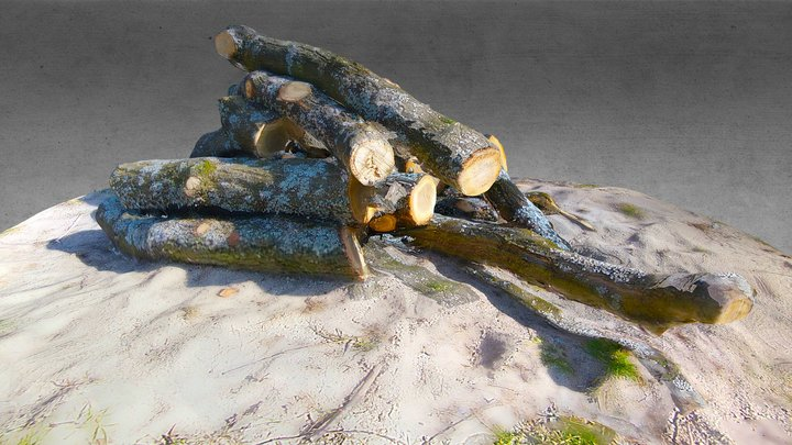 Woodpile from Fisheye Lens 3D Model