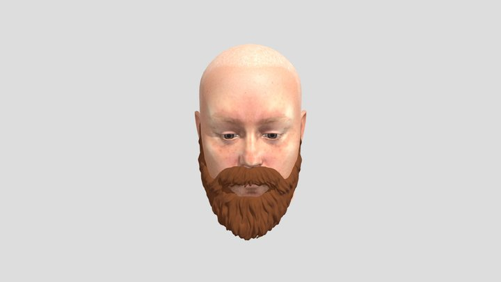 sam_head 3D Model