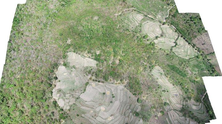 Situs Megalitikum Sarkofagus Ai Renung 3D Model