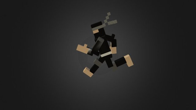 [Project Catnip] Voxel Ninja Run 3D Model