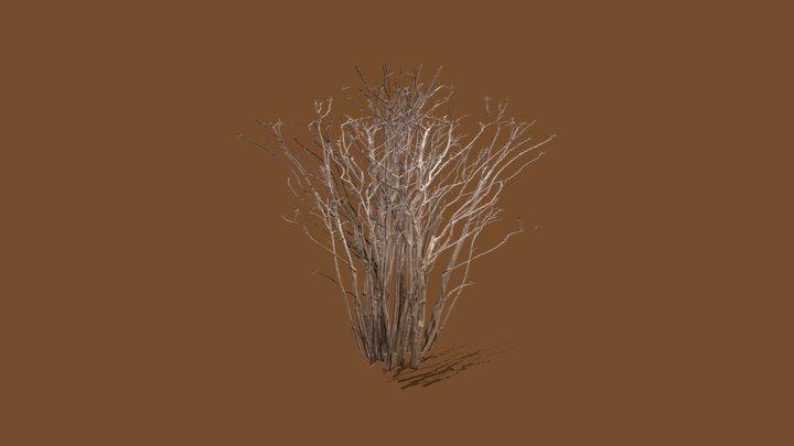 Bush without leaves 3D Model