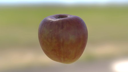Apple Photogrammetry 3D Model