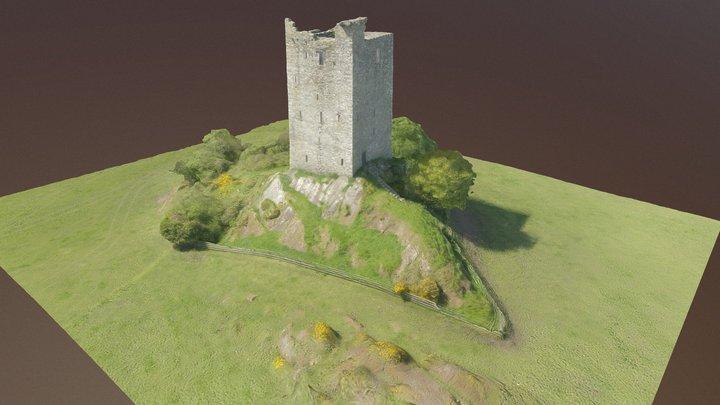 Carrickaphooca castle near Macroom Co. Cork 3D Model
