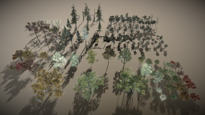 High Quality Trees for VR 3D Model