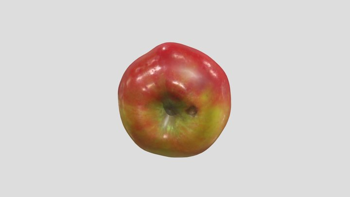 Apple 3D Scan 3D Model