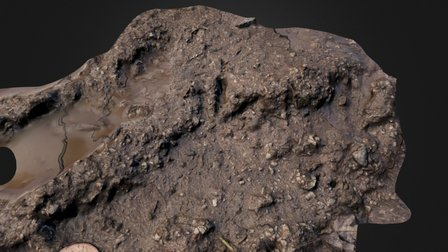 Bird footprint soft mud, Raby, Wirral (2) 3D Model