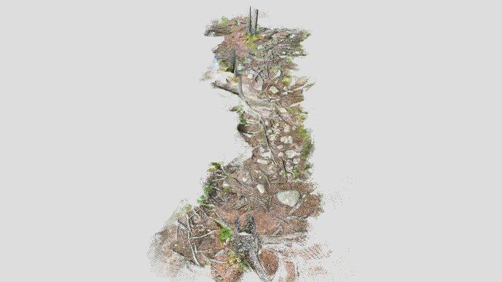 Forest Path - SiteScape 3D Map 3D Model