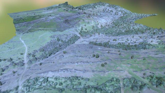 Montecillo Chico 3D Model