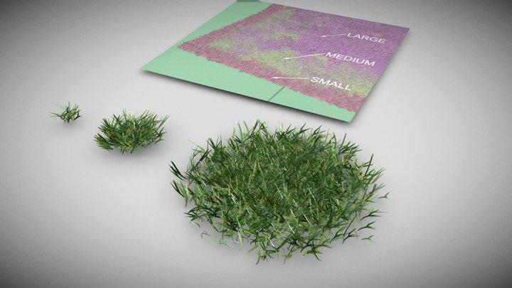 Vegitation Grass Lawn Simple 3D Model