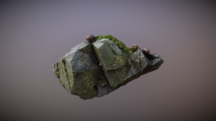 Snails on Mossy Rock 3D Model