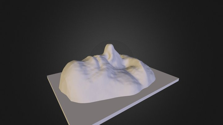 andyFaceWithBlock5 3D Model