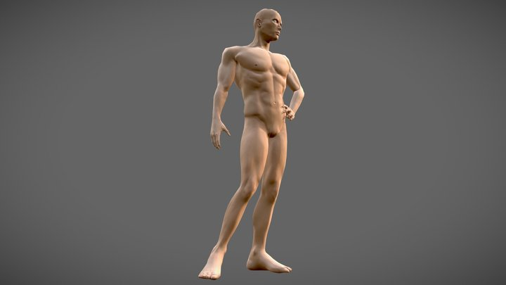 Human Male (GameRes With Skin) 3D Model