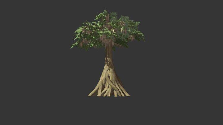 Great Bald Cypress 3D Model