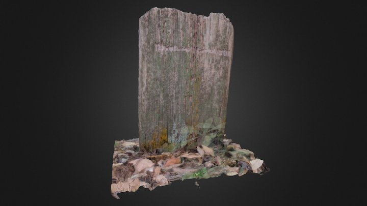 Wooden Headstone (PhotoScan) 3D Model