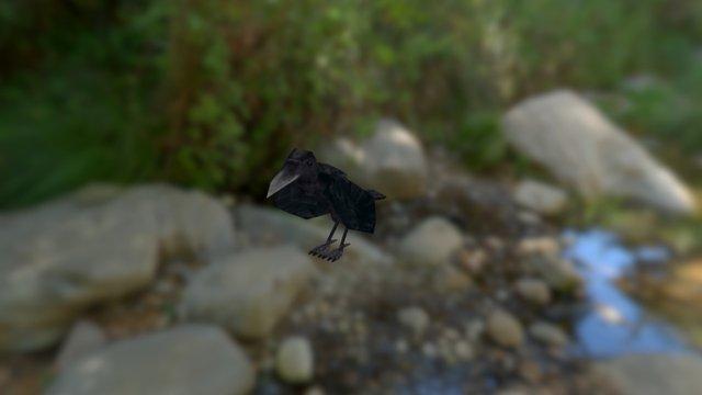 Raven (Animated) 3D Model
