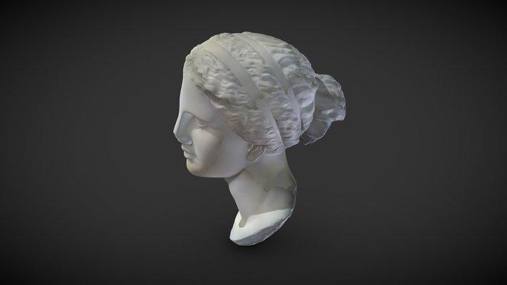 Vénus 3D Model
