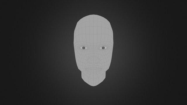 Woman Head Model Topology 3D Model