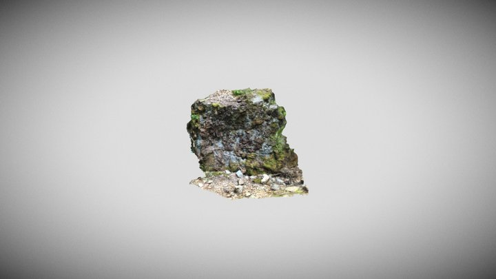 Mossy Rock Photoscan 3D Model