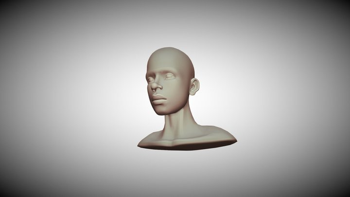 3D head topology reference 3D Model