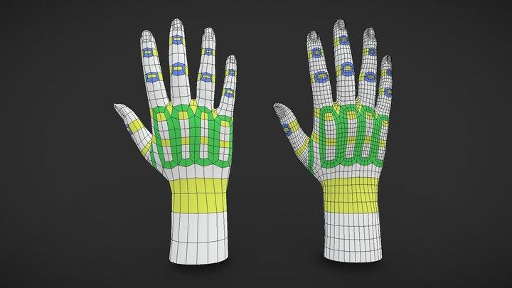 Hand Topology Study 3D Model