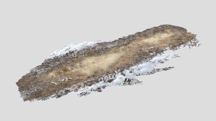 2021_01_08 landscape to pimp-poly 3D Model