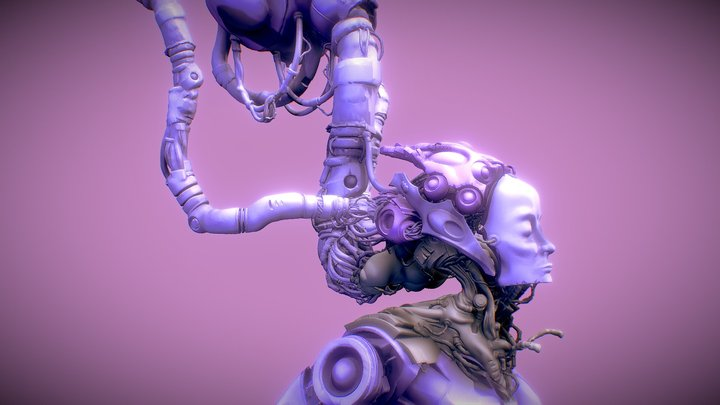 Wired 3D Model