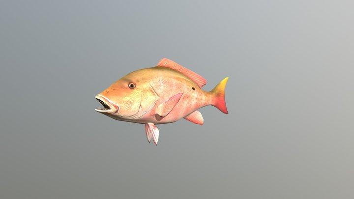 Snapper Fish 3D Model
