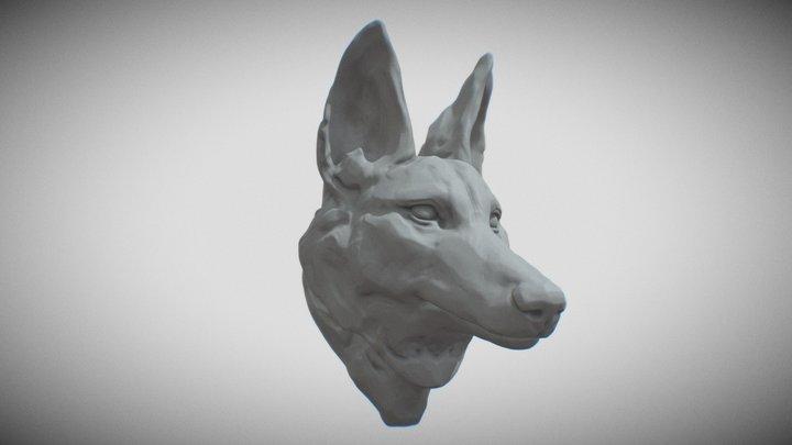 Maned Wolf 3D Model