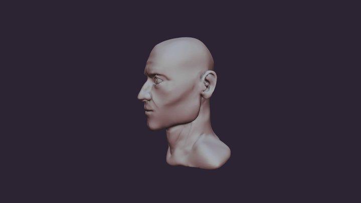 Semirealistic Male Head Sculpt Practice 3D Model