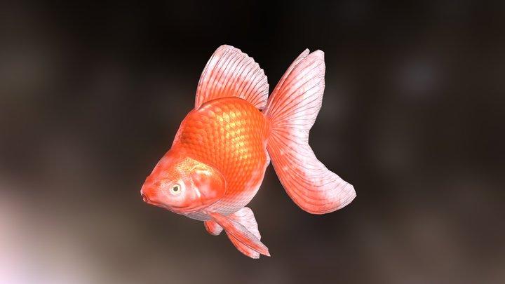 Ryukin goldfish 3D Model