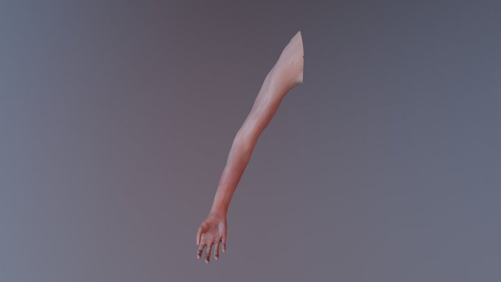 WOUNDED ARM 3D Model
